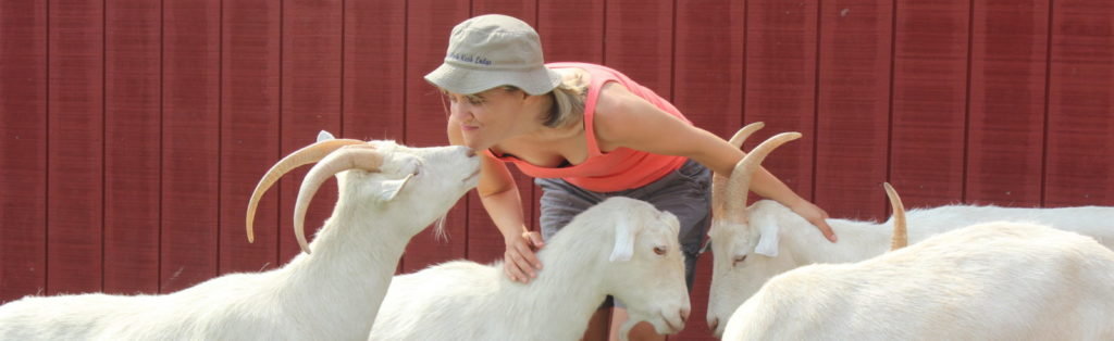 A fourth-grade teacher (Suburban Snow White) snuggles with some rescued goats at Farm Sanctuary.