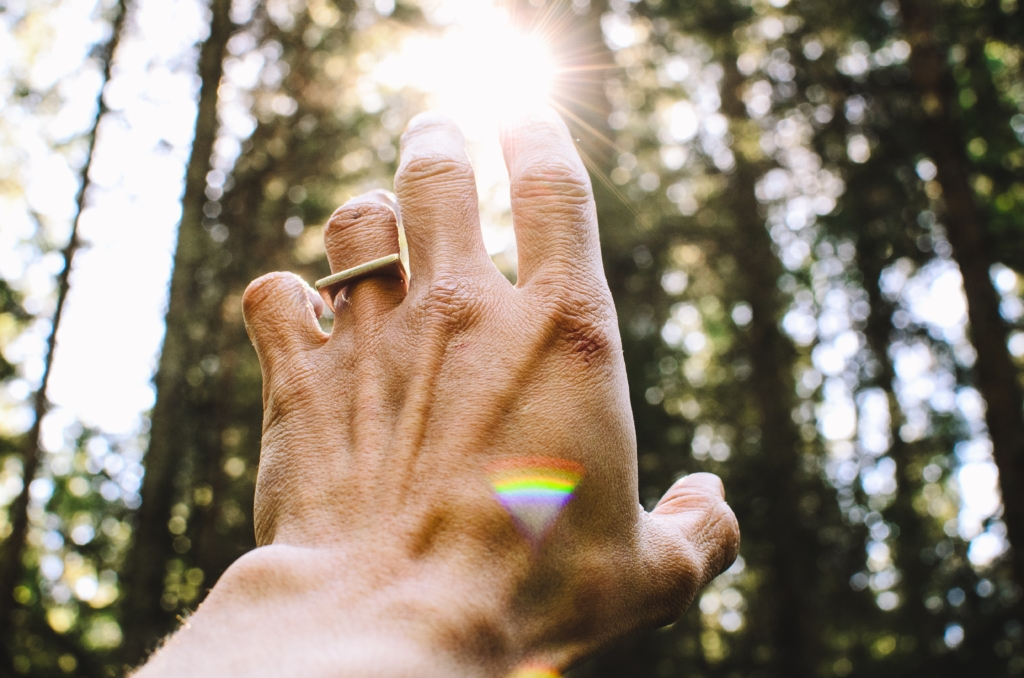 A hand reaching toward the light is a good metaphor for trying to find a classroom job list that works. It's seldom going to be perfect, but keep adjusting and it will be worth it in saved time and peace of mind. Photo by Aaron Blanco on Unsplash.