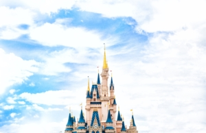 This is a picture of the Disney castle. Our head custodian is a Disney fan and that brought him closer to our students.
